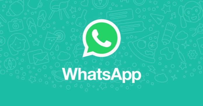 WhatsApp adding search the Web feature to cross-check the message